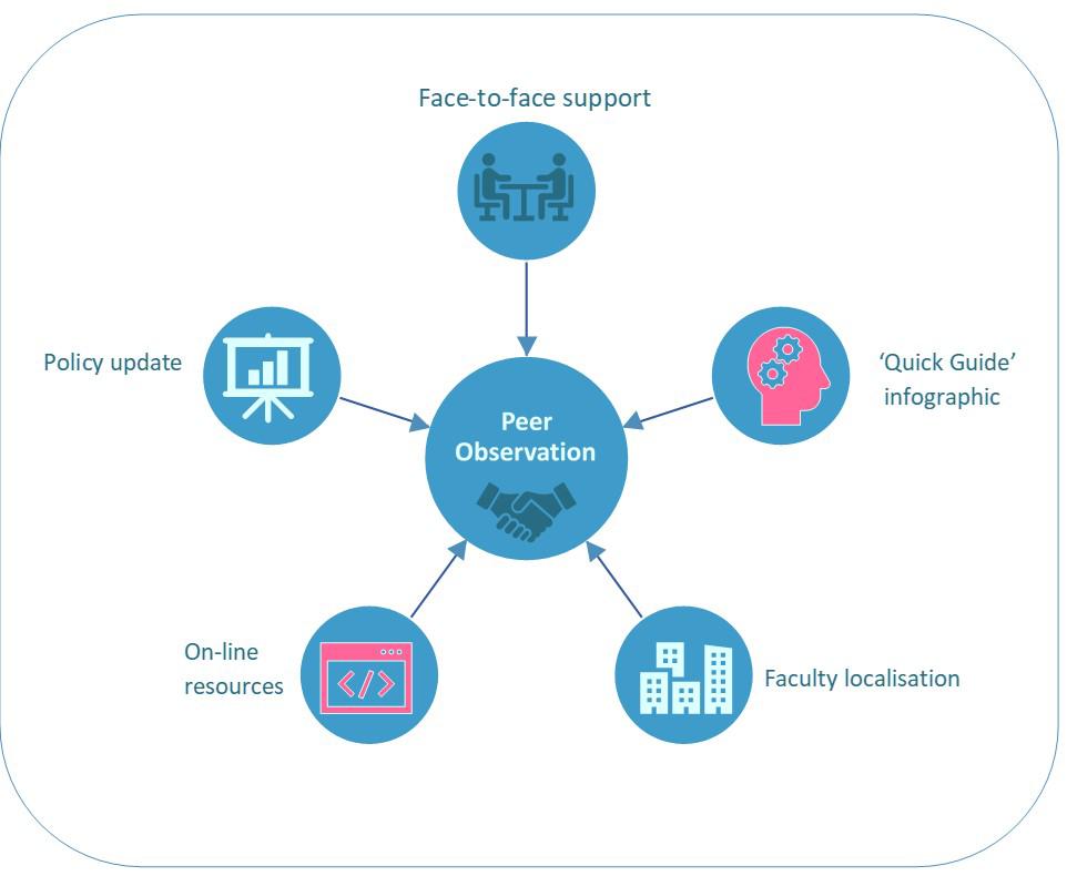 Peer Observation Infographic